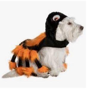 NWOT Pet Costume